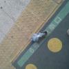 武蔵浦和駅にいたはとさん。