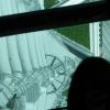 フロア340にある、ガラス床に乗ってみた。おおたかいたかい