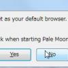 Pale Moonをデフォルトのブラウザにするかと聞いてくるので、ここではNo。