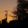ほぼ同じ物を、「夕焼け」というモードで撮影。