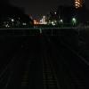 山手線ですね。時々、湘南新宿ラインが走っている線では貨物列車が走っていました。
