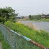 古利根川。この日は風が強かった。